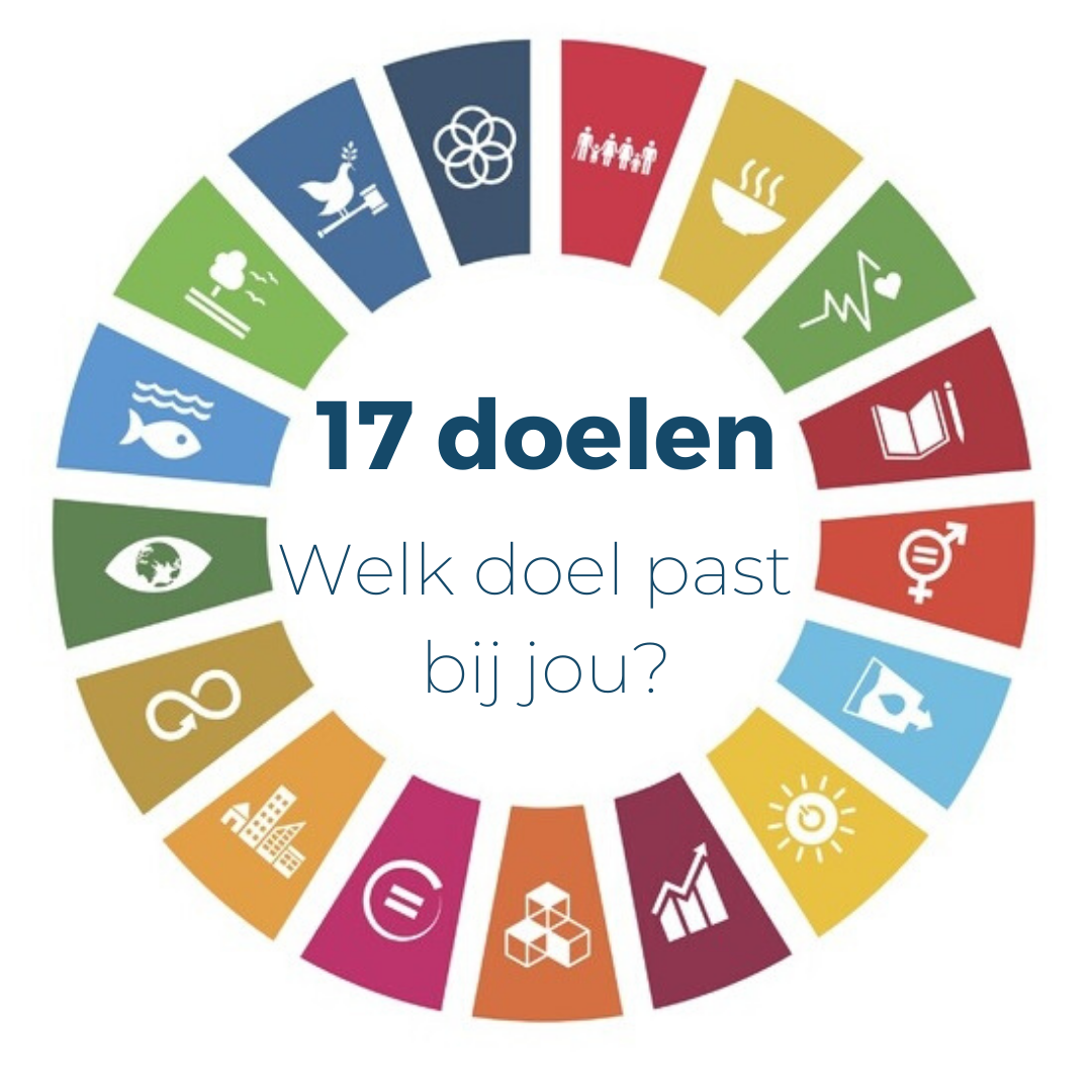 De SDG's – 17 doelen